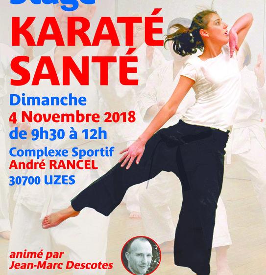Affiche Stage Karaté Santé Comité Départemental du Gard Karaté